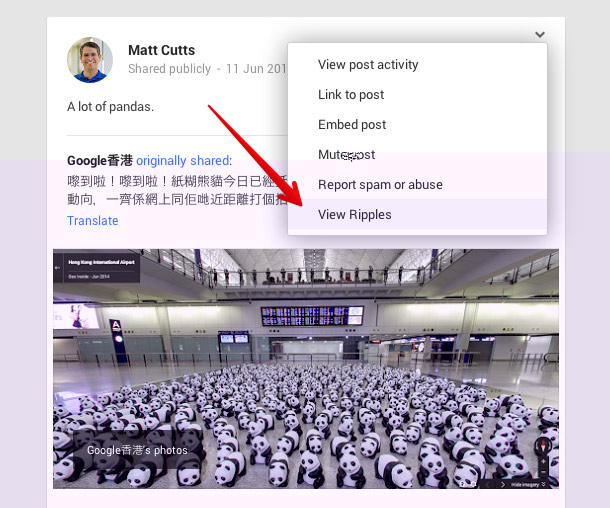 پروفایل گوگل6